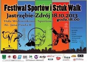 PlakatFSISW2013m