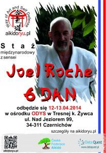 Staz_Roche_2014